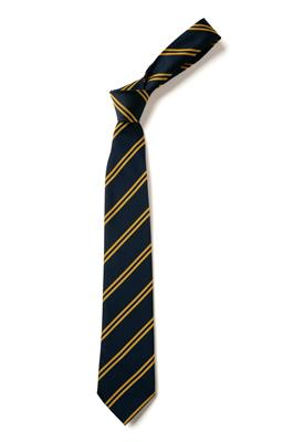 DS104 NAVY/GOLD