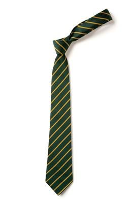 TS11 GREEN/GOLD